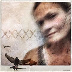 xoxo (lorenka campos) Tags: birds mobileartistry fineart modernart art selfportrait missingyou blue hugsandkisses xoxo melancholy poloroid portraits