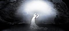 dancer 1 (Poli Maurizio) Tags: sony sonydsch200 disegno art abstract painting sculpture museum gallery virtual artist master famous canvas painter collection drawing impressionism naturalism renaissance expressionism realism baroque sketch garden portrait autumn flower light nature sky spring summer indoor travel water woman yellow blue black white color movement figure macro photo object fine unlimited still life mattepainting fantasy fantastic facebook twitter linkedin pinterest instagram tumblr outdoor atmosferic watercolor technique surrealism digitalart 3dweddingpartyfamilytravelfriendsjapanvacationlondonbeachcaliforniabirthdaytripnycsummernatureitalyfrancemeparisartflowerssanfranciscoeuropechinaflowernewyorkwaterpeoplemusiccameraphone 3daustraliachristmasusaskygermanynewcanadanightcatholidayparkbwdogfoodsnowbabysunsetcitychicagospaintaiwanjulybluetokyoenglandmexicowinterportraitgreenred 3dpolimaurizioartworkredfunindiaarchitecturegardenmacrospringthailandukseattlefestivalconcertcanonhouseberlinhawaiistreetlakezoofloridajunemaywhitevancouverkidstreecloudstorontobarcelonageotaggedhome 3dbwbwdigitalseadaytexasscotlandcarlighthalloweencampingchurchanimalstreeswashingtonrivernikonaprilbostongirlirelandgraffitiamsterdamrocklandscapeblackandwhitecatsnewyorkcitysanromeroadtripurbanhoneymoonocean 3dwatercolorsnewzealandmarchblackmuseumyorkhikingislandmountainsyellowsydneysunhongkongshowgraduationcolorfilmmountainanimallosangelesschoolmoblogphotodogs 3dartdesigndisegnosiciliacalabriabasilicatacampaniamarcheabruzzomoliselaziotoscanaemiliaromagnalombardiavenetofriuliveneziagiuliapiemontevalledaostaliguriatrentinoaltoadigepuglia 3dlandscapepaesaggiolunasolemarenuvolecittàtramontoalbamontagnecollinenebbialuceautomobilearredamentointerniesterninaturamortacieloragazzadonnauomobambinofruttabarca 3dcanigattirinascimentomodelbarocconaturalismomattepaintingfuturismoastrattismocubismosurrealismorealismoiperealismoclassicismorococomanierismoromanticismoimpressionismogiocovirtualepe
