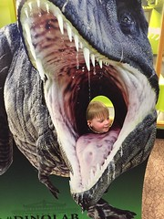 """Paul at Jurassic World at the Field Museum • <a style=""""font-size:0.8em;"""" href=""""http://www.flickr.com/photos/109120354@N07/35567693191/"""" target=""""_blank"""">View on Flickr</a>"""