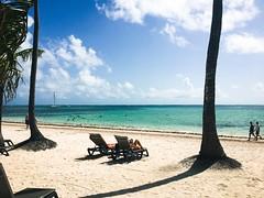 (iehly06) Tags: vacation caribbean water dominicanrepublic palmtrees whitesand beach bavarobeach puntacana