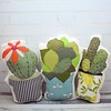 "Cactus Cushion Trio • <a style=""font-size:0.8em;"" href=""http://www.flickr.com/photos/29905958@N04/35643035332/"" target=""_blank"">View on Flickr</a>"