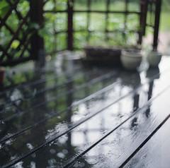garden - impressions of a rainy day (Neko! Neko! Neko!) Tags: garden rain mood feeling summer2017 summer polska poland europe squareformat analogue volna380mmf28 volna 120filmformat 120 sovietcameras 6x6 6x6cm mediumformat kiev60 fujicolorpro400h fujicolor colour