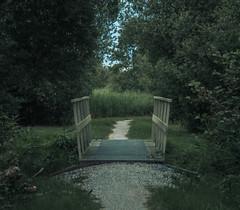 Small Bridge (stefanfortuin) Tags: bridge path pad gravel grind nederland netherlands wolvega friesland fryslan weststellingwerf rottige meenthe outside buiten summer zomer cloudy bewolkt wandelen walking water river sloot