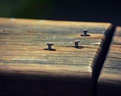 Week 26:  Photographer's Choice (blamstur) Tags: project52 52weeks nails three wood seenbetterdays railing blackbackground 15challengeswinner