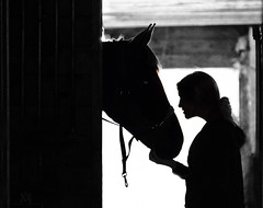 the kiss (marianna_a.) Tags: equestrian horse girl young lady kiss affection bond backlight silhouette monochrome mariannaamata p1440150
