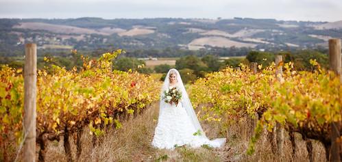Bride Vines