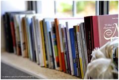 Capisci di aver letto un buon libro quando giri l'ultima pagina e ti senti come se avessi perso un amico. (Paul Sweeney) (albygent Alberto Gentile) Tags: libri books focus fuoco bokeh