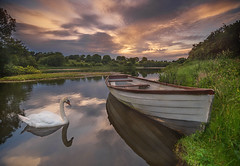 At the lake. (Piotr Dominiak Phototherapy) Tags: irelad sunset lake boat swan clouds evening landscape photo meath louth nikon d750 hitech