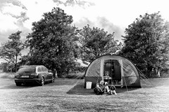 Camping in Yorkshire (Missy Jussy) Tags: camping tent car transport travel trip field penistone yorkshire campingcaravanclub trevorkerr mollie molliemunch rupert rupertbear dogs springerspaniel pets man spaniel trees sunshine canon canon5dmarkll 50mm ef50mmf18ll canon50mm