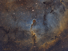 IC 1396 - vdB 142 - Hubble Palette (Paolo De Salvatore) Tags: ladispoli ha nebula nubulosa skywatcher esprit 10micron gm1000 hps moravian ccd g28300 astrodon ic1396 vdb142 trunk elephant