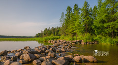 Mississippi headwaters, Itasca (djayakumarid) Tags: mississippiheadwaters itasca