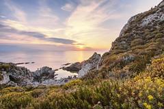 Light of Sicily at sunset (fabioscrima) Tags: sunset sun sea summer seashore seascape seaside beach nature landscape green horizon italy travel europe sicily