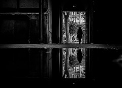 ÷ (d26b73) Tags: monochrome silhouette reflection blackandwhite bw streetphoto urbanarte
