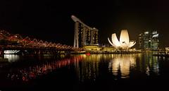 ArtScience Museum || Singapore (David Marriott - Sydney) Tags: singapore sg art science museum artscience marina bay sands helix bridge