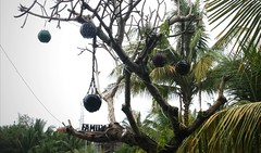Ubud Warung (scinta1) Tags: indonesia bali ubud tropical warung makan