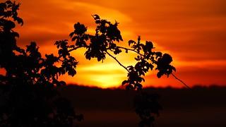 der letzte Sonnenaufgang vor der Sonnenwende