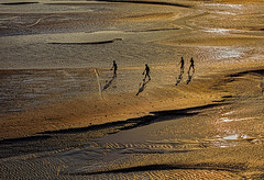 our golden land (mailmesanu20111) Tags: silhouette riverbank people landscape landscapebeauty wetland westbengal travelphotographyindia tourism india indian evening goldenlight curve naturespattern reflection