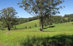573 Irvines Road, Newee Creek NSW