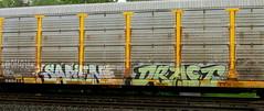sapien - draft '08 (timetomakethepasta) Tags: sape draft cdc freight train graffiti art autorack benching selkirk new york photography koin