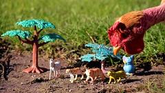 Tiny Toys & Co. (luenreta) Tags: smile saturday smileonsaturday tinytoys tiny chiken