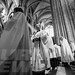 """Ordination of Priests 2017 • <a style=""""font-size:0.8em;"""" href=""""http://www.flickr.com/photos/23896953@N07/34831298434/"""" target=""""_blank"""">View on Flickr</a>"""