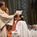 """Ordination of Priests 2017 • <a style=""""font-size:0.8em;"""" href=""""http://www.flickr.com/photos/23896953@N07/34831301724/"""" target=""""_blank"""">View on Flickr</a>"""