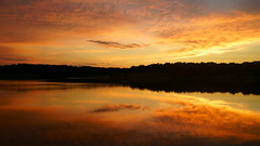 20170702-204441 (gregnboutz) Tags: cloud beautifulclouds cloudiness clouds cloudy cloudylake colorfulclouds lakesunset lakesunsets orangesunset orangesunsets sunset sunsets colorfulsunsets