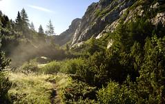Morning Haze (matteo.buriola) Tags: friuli alpi carniche valle di aip sella path landscape paesaggio mountains trekking nature nikon d3100