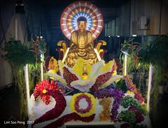 Wesak Night  8.5.17 015 (lspeng) Tags: wesaknight8517 wesak buddha triple blessed day year cockerel 2017