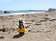 On Vacation (that_brick_guy) Tags: fuengirola spain andalucia nikkor18g nikkor 18g d7200 nikon dslr toystories toystory toyphotography toy ring rubber rubberring dynamicduo capedcrusader darkknight wayne bruce brucewayne onvacation vacationbatman vacation minifigure legominifigure lego legobatmanmovie legobatman batman