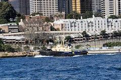 Tug Switzer Bondi blends with the buildings of Millers Point nd Barangaroo (john cowper) Tags: sydneyharbour darlingharbour tugboats switzerbondi millerspoint barangaroo workingboats sydney newsouthwales