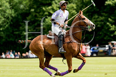 © 2017 Photographs by Robert Piper- All Rights Reserved 699 _ (Ham Polo Club) Tags: jacaranda challengematch vendetta 2017the london polo club tw107ah england gbr