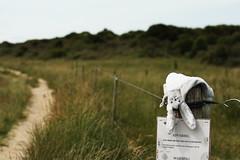 lost (alesolofoto) Tags: danimarca denmark rubjergknude faro fyr lighthouse
