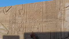Detailing Pregnancy - Kom Ombo Temple Hieroglyphs (Rckr88) Tags: komombo egypt kom ombo komombotemple komombotemplehieroglyphs africa travel travelling carving carvings carve relic relics ancient ancientegypt pharoah pharoahs temple hieroglyphs detailing pregnancy detailingpregnancy
