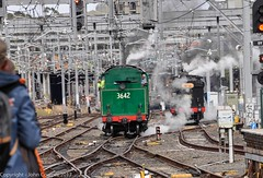 Transport Heritage Expo 2017 - -12 (john cowper) Tags: transportheritagensw centralrailwaystation transportheritageexpo heritagediesels nswrailmuseum 3642 3041 4001 mortuarystation entertainment queensbirthdayweekend sydney newsouthwales