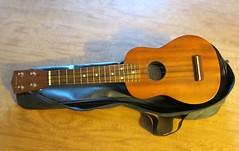 Musical instruments: Ukulele (ali eminov) Tags: instruments musicalinstruments stringedinstruments ukulele
