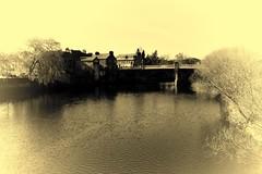 Dumfries - River Nith (clarktom845) Tags: dumfries nith river bridge scotland nikon ngc
