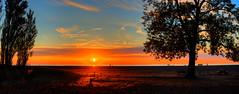 Headlands Sunset 2017.06.08.20.49.15 (Jeff®) Tags: jeff® j3ffr3y copyright©byjeffreytaipale beach headlandsbeach blue yellow red trees sillouette lake lakeerie greatlakes ohio ohiopark statepark sand summer twop