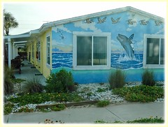 In Flagler Beach (Chris C. Crowley- Always behind but trying to catc) Tags: inflaglerbeach flaglerbeachflorida motel mural whale pelicans painting charming cute vintage flaglermotel