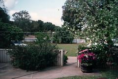 Nana & Grandad's Residence (RS 1990) Tags: greenock murrayst grandparents house residence nanagrandads retro nostalgia throwback flashback memories adelaide australia southaustralia