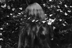 Wild Roses (Arslan Ahmedov) Tags: she roses summer plovdiv bulgaria blackandwhite noir