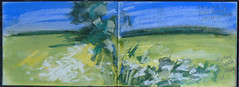 Cow parsley on the drain bank near Marsh House Farm. (johnhumber48) Tags: landscape cowparsley eastyorkshire sunkisland sketchbookpages sketchbook summer