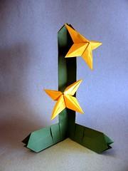 Stapelia - Nilva Pillan (Rui.Roda) Tags: origami papiroflexia papierfalten flor fiore fleur nilva fina pillan