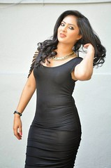 Indian Actress Nikesha Patel Hot Sexy Images Set-2 (96)