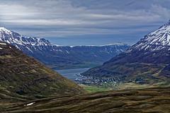 Iceland (Hemo Kerem) Tags: iceland island a7rm2 a7rii nikon85mmf2ais nikkor85mmf2ais ais85mmf2 ais285 landscape travel roadtrip green water sea snow grass 85mm manualfocus mf nikon nikkor sony sonya7rm2 ilce7rm2 alpha seydisfjordur seyðisfjörður fjord