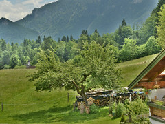 Inzell 2017 (Günter Hentschel) Tags: inzell chiemgau ts kreistraunstein bayern urlaub freizeit chillen paradies deutschland germany germania alemania allemagne europa flickr hentschel outdoor nikon nikond5500 d5500 landschaft natur schön