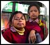 NEPAL, Bodnath, Kinder haben Spaß im Bus, (serie) 16287