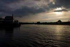 _DSC7698 (durr-architect) Tags: spiegelwaal ruimte room river waal nijmegen netherlands high water flood island bridge nevengeul