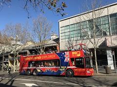 Explorer (highplains68) Tags: aus australia sydney buses explorer tourist harris st street pyrmont