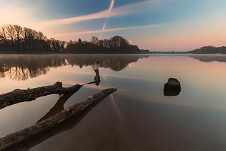 Morgens am Tegeler See